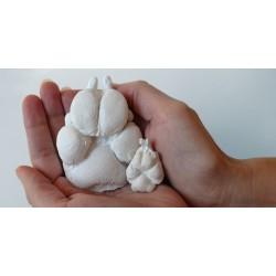 3D odlitky psích tlapek